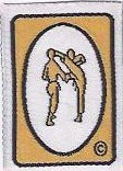 Gold Sparring Badge