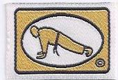 Gold Press Ups badge